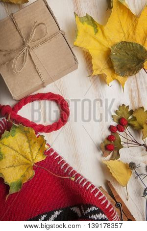 The Autumn Still Life knitted cap gift leaves and dried berries
