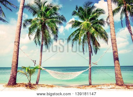 Beautiful beach.  Hammock between two palm trees on the beach. Holiday and vacation concept