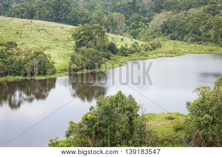 Big lake reflecting shadow and sky inside green tropical forest surrounded by tree bush and flowering thatched grass hills.