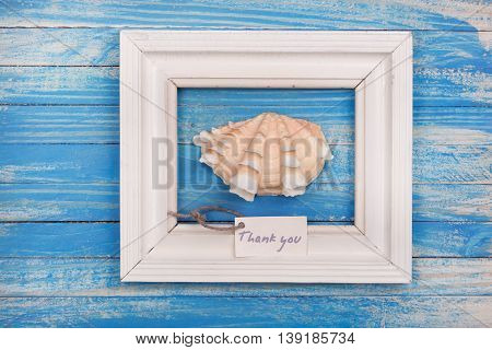 Sea Shell In The Frame With Sign - Thank You