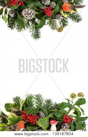 Traditional winter background border with holly, ivy, fly agaric mushroom and robin decorations with snow covered pine cones and fir over white.