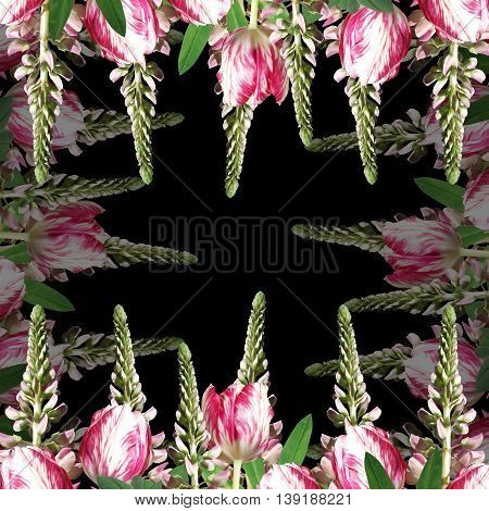Beautiful floral background of lupine and pink tulips