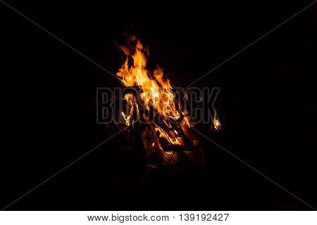 Camp fire burning in the dark night.