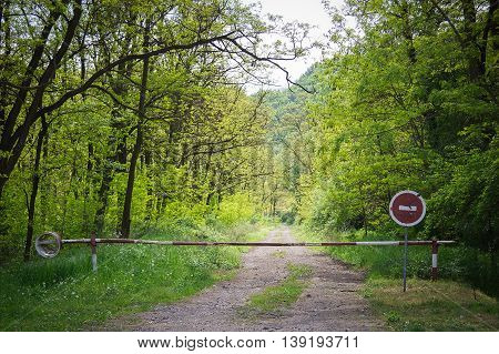Stop sign and gate on a forest road