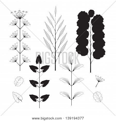 Collection Of Silhouette Leaves