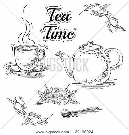 Hand drawn tea set. Teapot vector. Vintage tea posters. Set of tea vector graphic designs. Vintage pamphlet. Tea labels. Tea ware. Cup saucer maker dessert