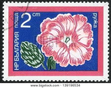 BULGARIA - CIRCA 1978: A Stamp printed in Bulgaria shows a series of images