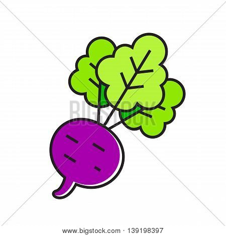 Illustration of beetroot with top leaves. Vegetable, healthy food, cooking. Food concept. Can be used for topics like food, cooking, vegetables
