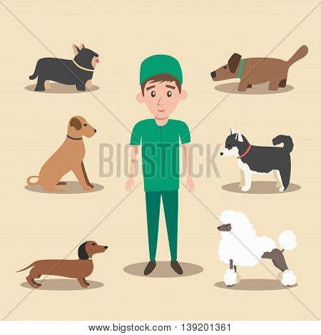 Set of dogs. Cartoon vector illustration. Vet clinic. Isolated background. Flat style. Domesticated dogs