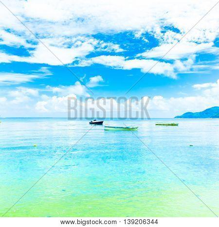 Dream Bay Shore