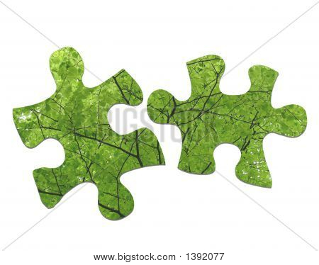 Leaves Jigsaw
