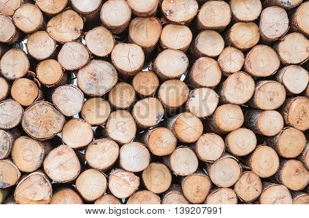 Closeup wood pattern at the pile of old wood timber textured background