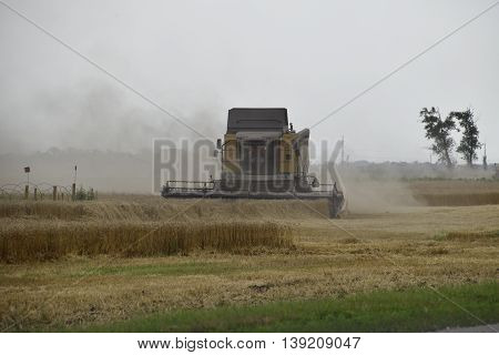 Russia Temryuk - 01 July 2016: Kombain collects on the wheat crop. Agricultural machinery in the field. Grain harvest.