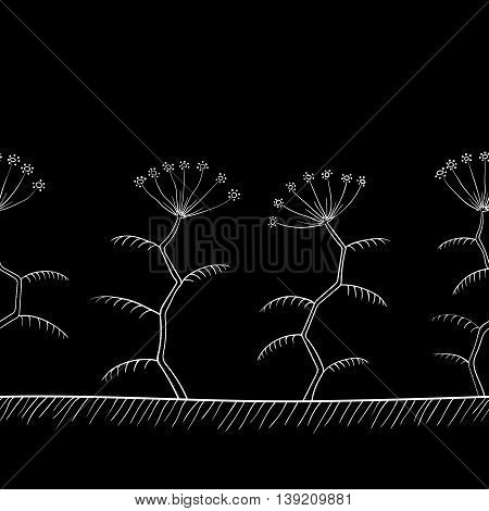 Tansy flowers border or background black and white