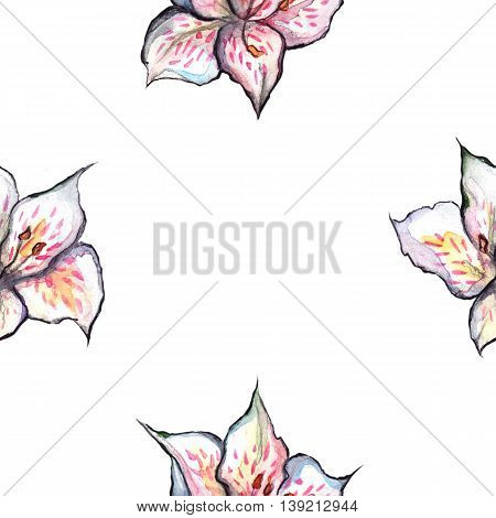 Watercolor alstroemeria floral seamless pattern textile background