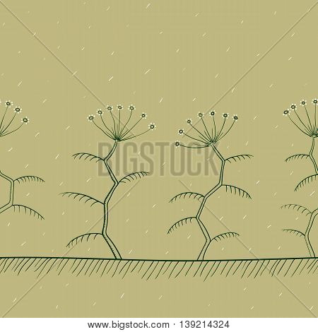 Tansy flowers border or background, natural color