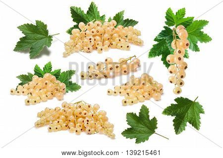 Set Of Whitecurrant Berries With Leaves, Paths