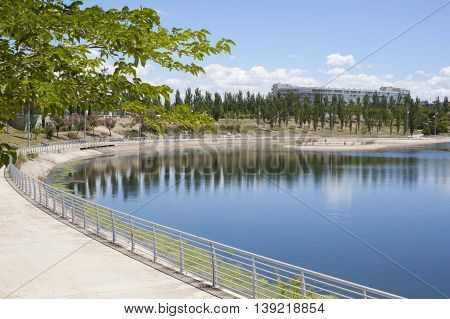 Black Poplars Over A Lake, And A Park In Summer