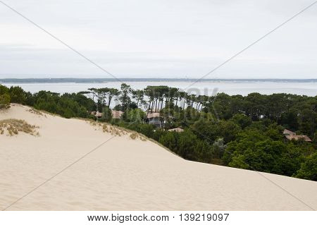 Houses Near The Coast, Between Trees And Near The Pilat Dune In France