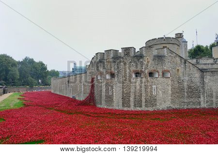 TOWER of LONDON UK Remembrance poppies at tower