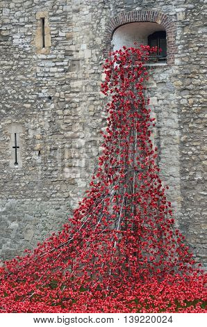 TOWER of LONDON UK Remembrance poppies flowing from window at tower