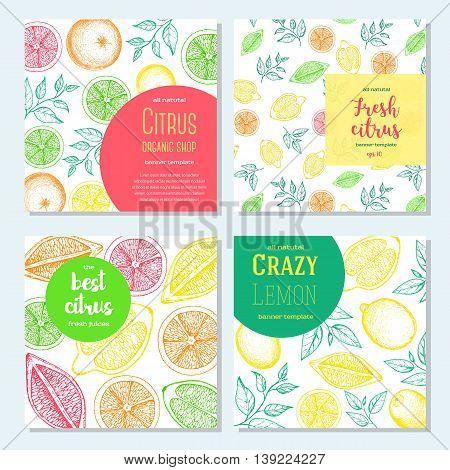 Citrus vertical flyer collection. Lemons and orange banners hand drawn in ink illustration. Vector vintage fresh illustration. Line art graphic.