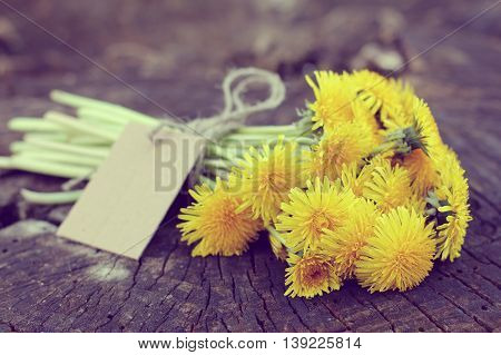 Retro bouquet of yellow dandelions lying on an old tree