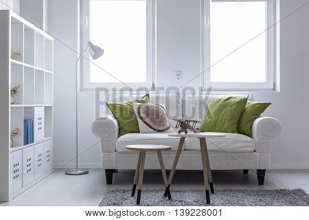 Shot of a living room designed in white with beautiful sofa and a large bookshelf
