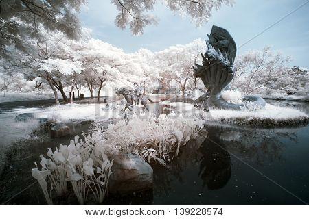 public park in Thailand, taken in near infrared