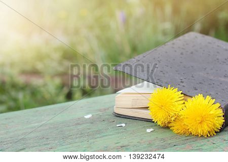 closed book paper with a flower bookmark on a park bench