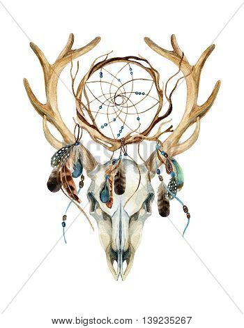 Deer skull. Animal skull with dreamcather. Deer skull and ethnic dreamcatcher with feathers isolated on white background. Watercolor hand painted illustration.