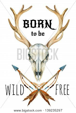 Deer skull. Animal skull with dreamcather. Deer skull and ethnic dreamcatcher with feathers isolated on white background. Born to be wild and free design. Watercolor hand painted illustration.