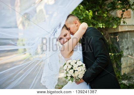 Groom Kissing On Neck Of Bride With Veil
