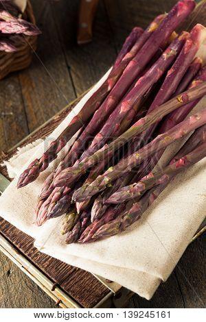 Raw Organic Purple Asparagus Spears