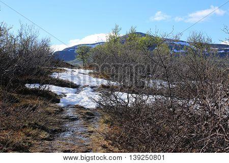 Snow In Summer While Ascending The Ansaett In Sweden