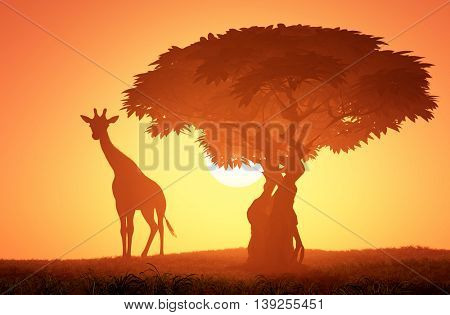 Silhouette of a giraffe at sunset.3d render