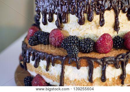 sponge cake with chocolate and fresh berries