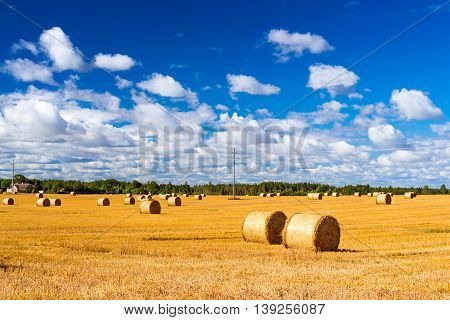 Stacks Of Straw - Bales Of Hay, Rolled Into Stacks