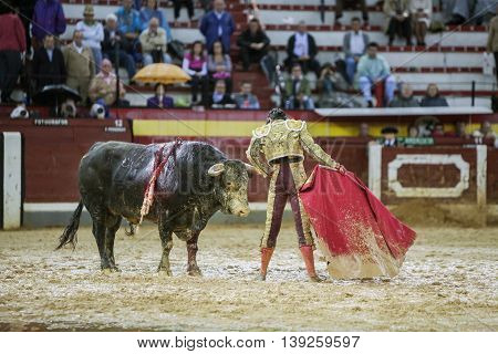 Jaen SPAIN - October 18 2008: The Spanish Bullfighter Sebastian Castella during a rainy afternoon bullfighting with the crutch in the Bullring of Jaen Spain