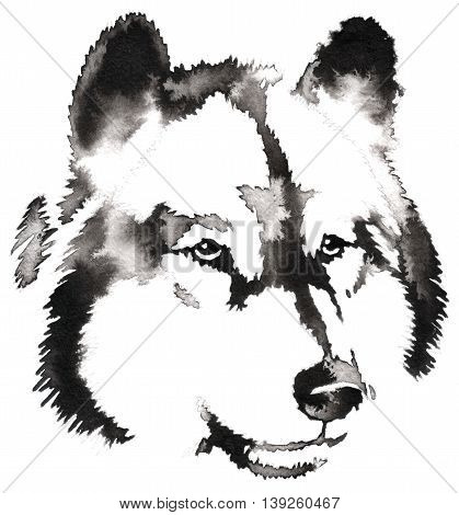 black and white painting with water and ink draw wolf illustration