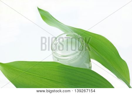 cosmetic cream in a glass jar with green leaves isolated