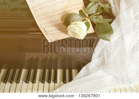 White rose with music notes on piano keys