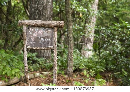 Next to a small trail into the forest is a sign reminding us the forest really is the home of the wild life, in this case the deer.