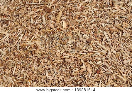 high angle view of mulch background in garden