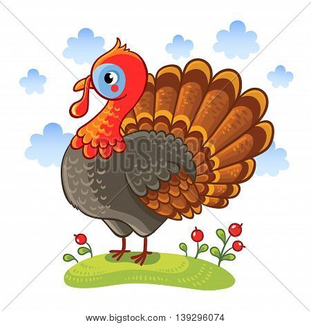 Cute cartoon character turkey. Turkey isolated on a white background vector illustration. Farm animal.