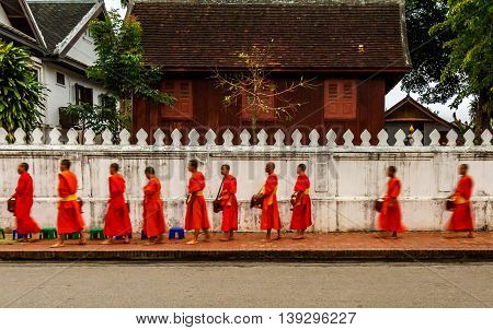 Orange robed buddhist monks walk down the street in Luang Prabang, Laos duing the alms ceremony