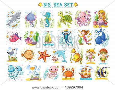 Big Marine set of vector illustration on the marine theme. Collection of sea animals in cartoon style. Tropical summer pictures. Sea life illustration.