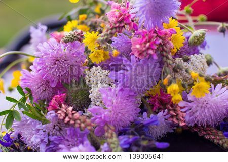 Flower Bouquet Bloom Spring Field Walk Colorful Spring Summer Wildflowers Concept