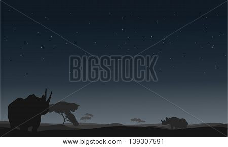 Silhouette of rhino lonely in the fields