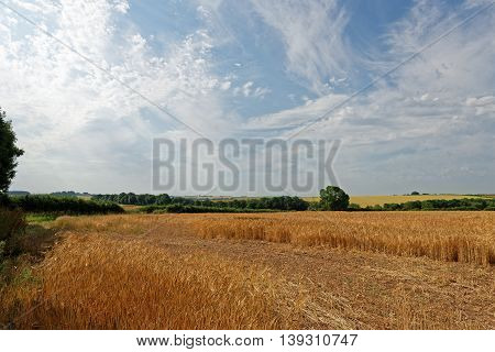 View over the farmland of the Lincolnshire Wolds UK in summer